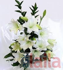 Ferns N Petals Green Park Delhi Florist In Ncr Reviews Asklaila