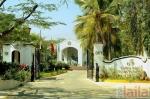 Photo of দ গোল্ডেন পাম্স স্পা ডসনাপুরা হোবলী Bangalore