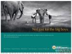 Photo of IDBI Bank Malleswaram Bangalore