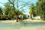 Photo of The Golden Palms Hotel And Spa Dasanapura Hobli Bangalore